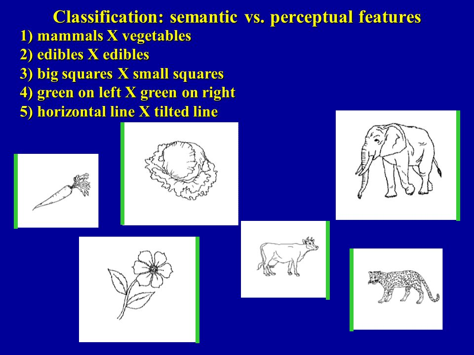 Classification: semantic vs. perceptual features