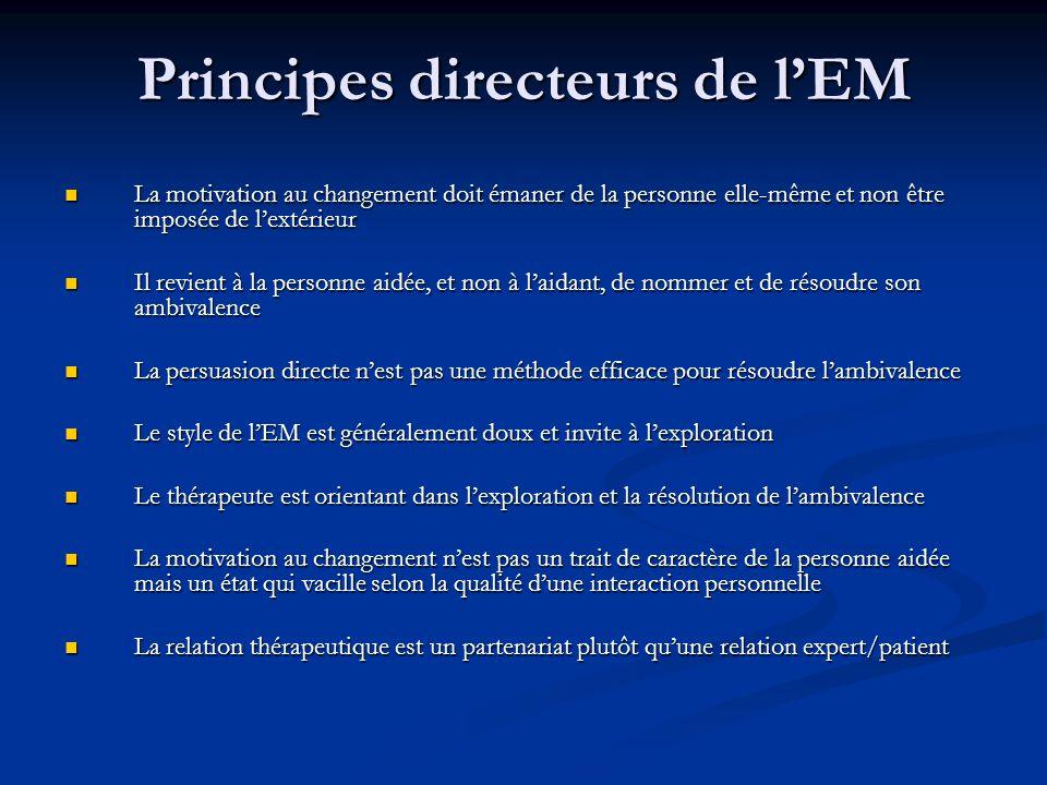 Principes directeurs de l'EM