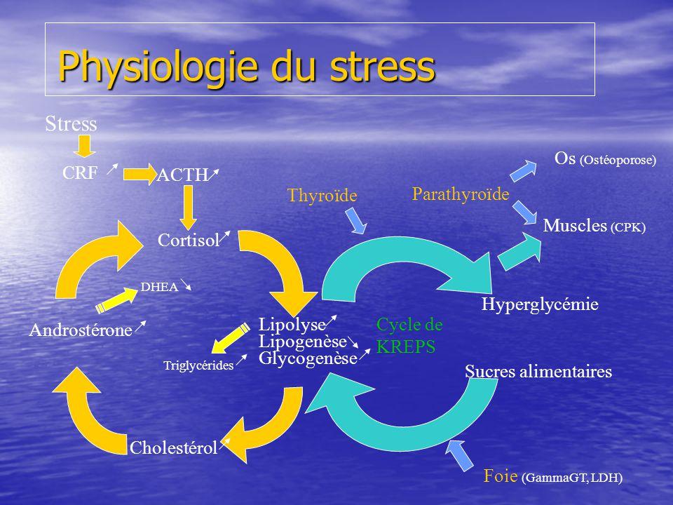 Physiologie du stress Stress Os (Ostéoporose) CRF ACTH Thyroïde