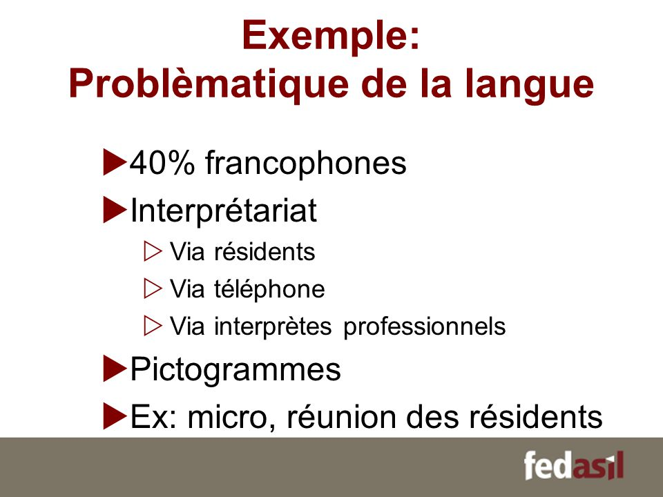 Exemple: Problèmatique de la langue