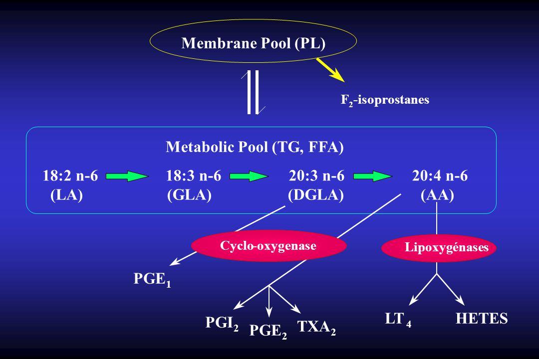 Membrane Pool (PL) Metabolic Pool (TG, FFA)