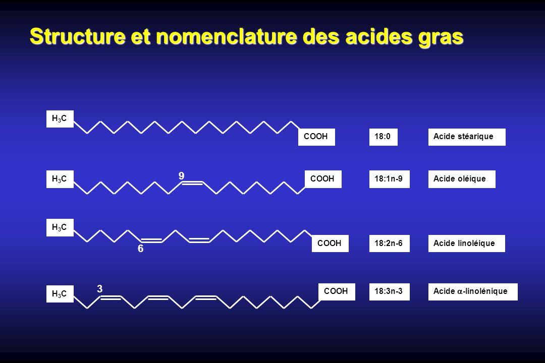 Structure et nomenclature des acides gras