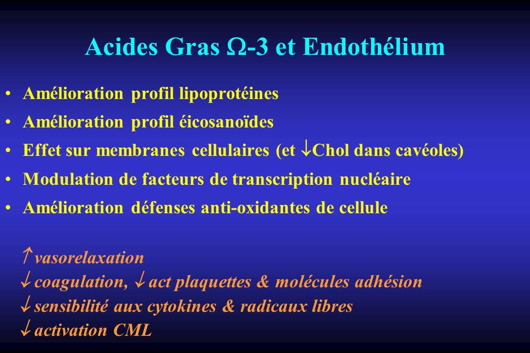 Acides Gras -3 et Endothélium