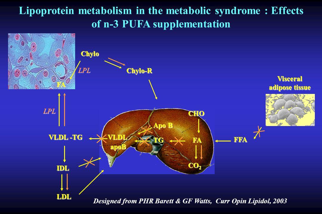 Visceral adipose tissue