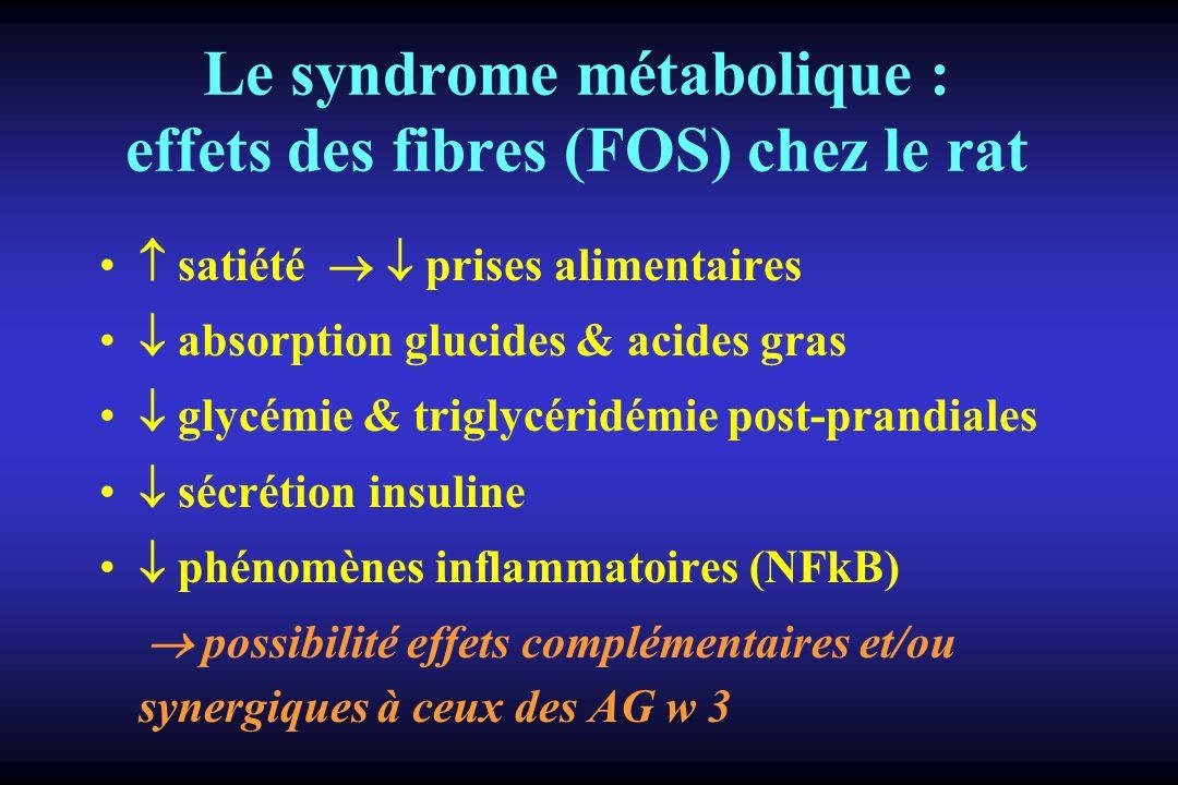 Le syndrome métabolique : effets des fibres (FOS) chez le rat