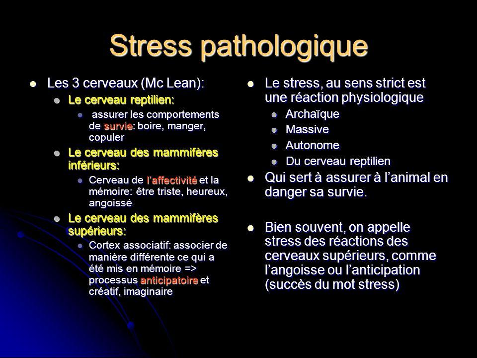 Stress pathologique Les 3 cerveaux (Mc Lean):