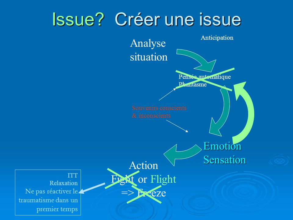 Issue Créer une issue Analyse situation Emotion Sensation Action