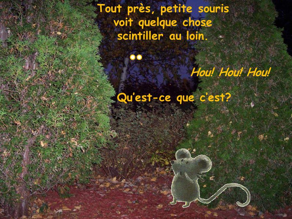 Tout près, petite souris voit quelque chose scintiller au loin.