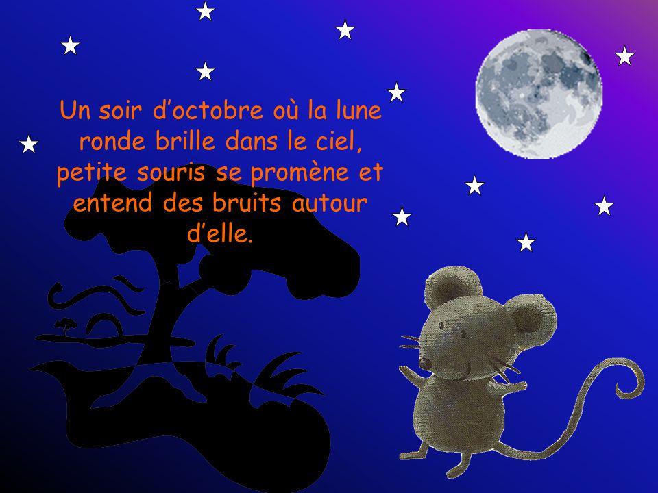 Un soir d'octobre où la lune ronde brille dans le ciel, petite souris se promène et entend des bruits autour d'elle.