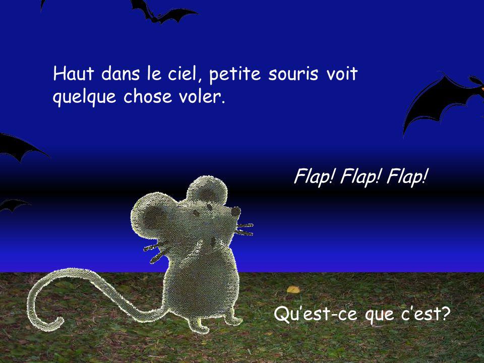 Haut dans le ciel, petite souris voit quelque chose voler.