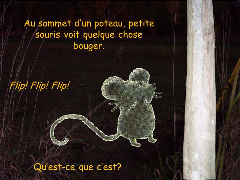 Au sommet d'un poteau, petite souris voit quelque chose bouger.