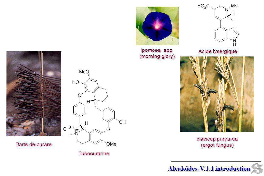 Alcaloïdes. V.1.1 introduction
