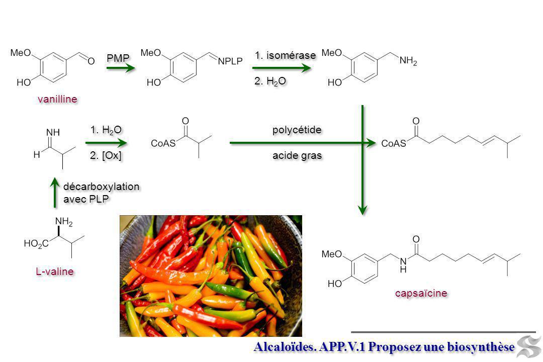 Alcaloïdes. APP.V.1 Proposez une biosynthèse