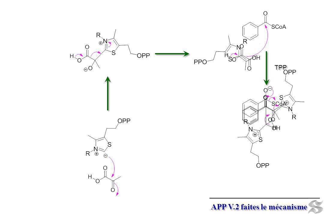 APP V.2 faites le mécanisme