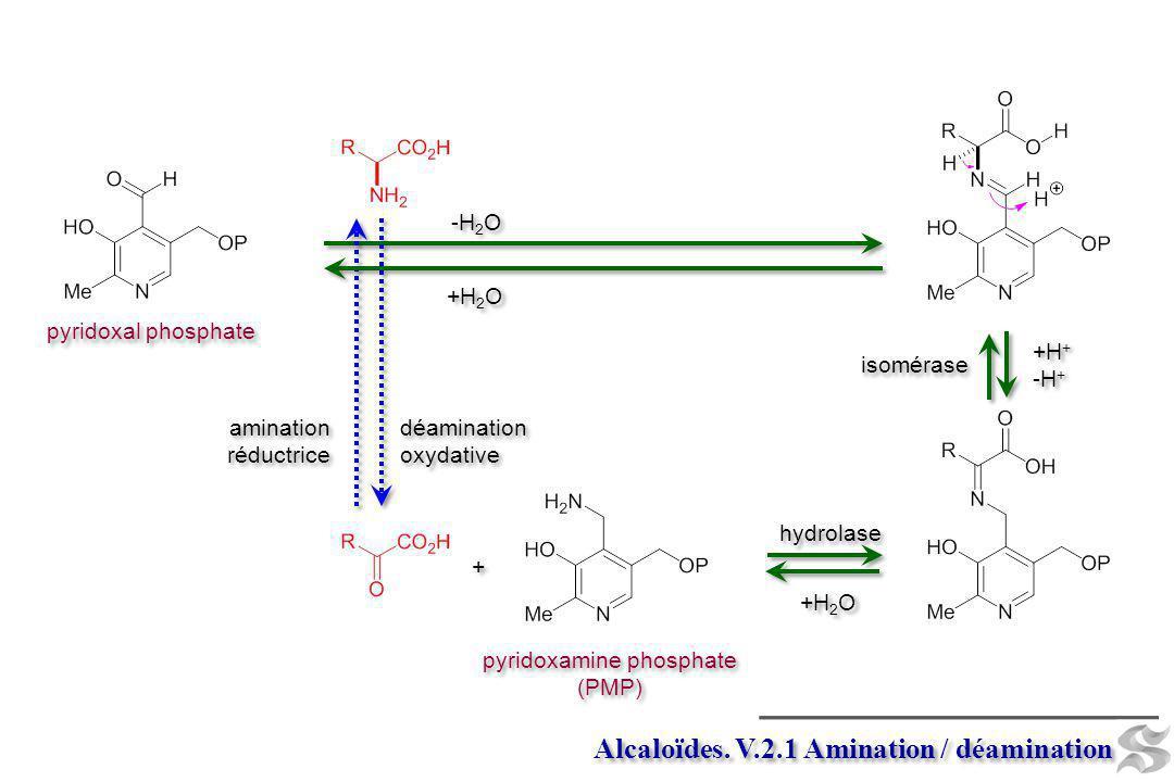 pyridoxamine phosphate