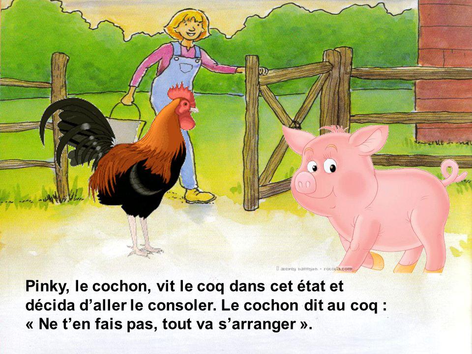 Pinky, le cochon, vit le coq dans cet état et décida d'aller le consoler.
