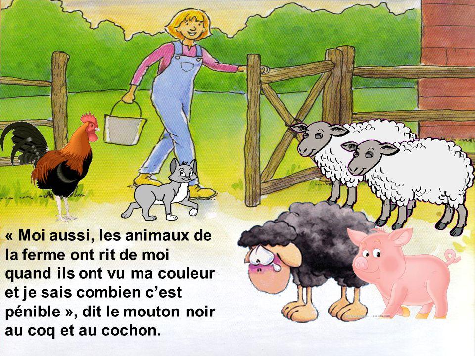 « Moi aussi, les animaux de la ferme ont rit de moi quand ils ont vu ma couleur et je sais combien c'est pénible », dit le mouton noir au coq et au cochon.