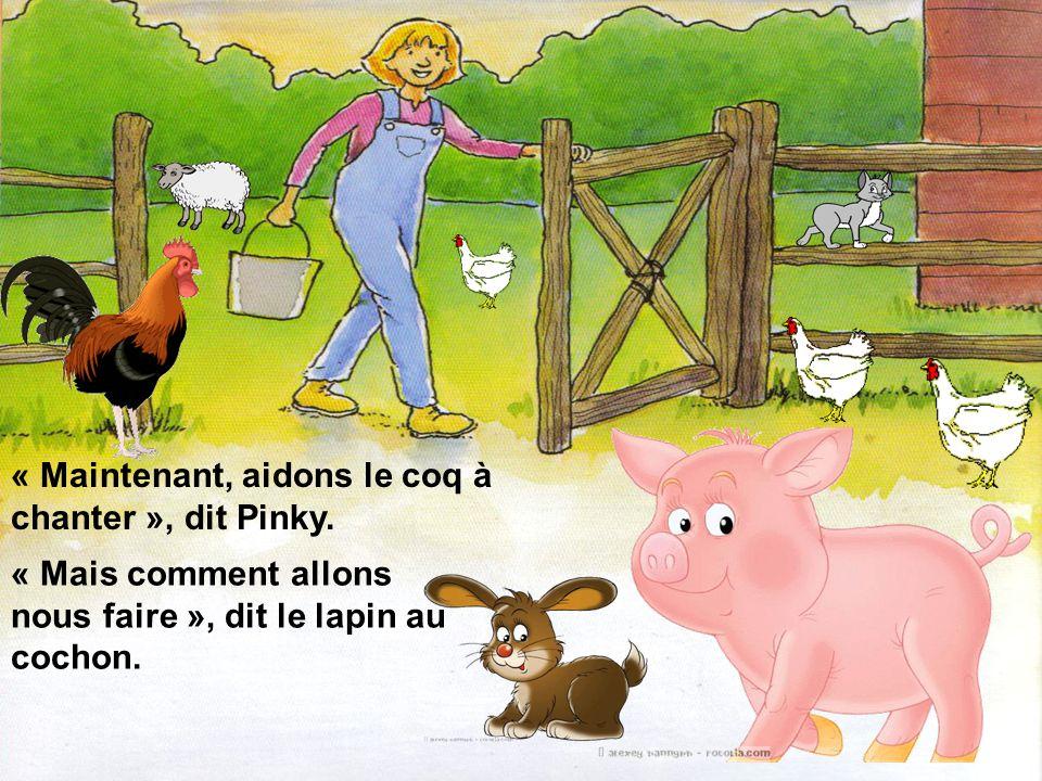 « Maintenant, aidons le coq à chanter », dit Pinky.