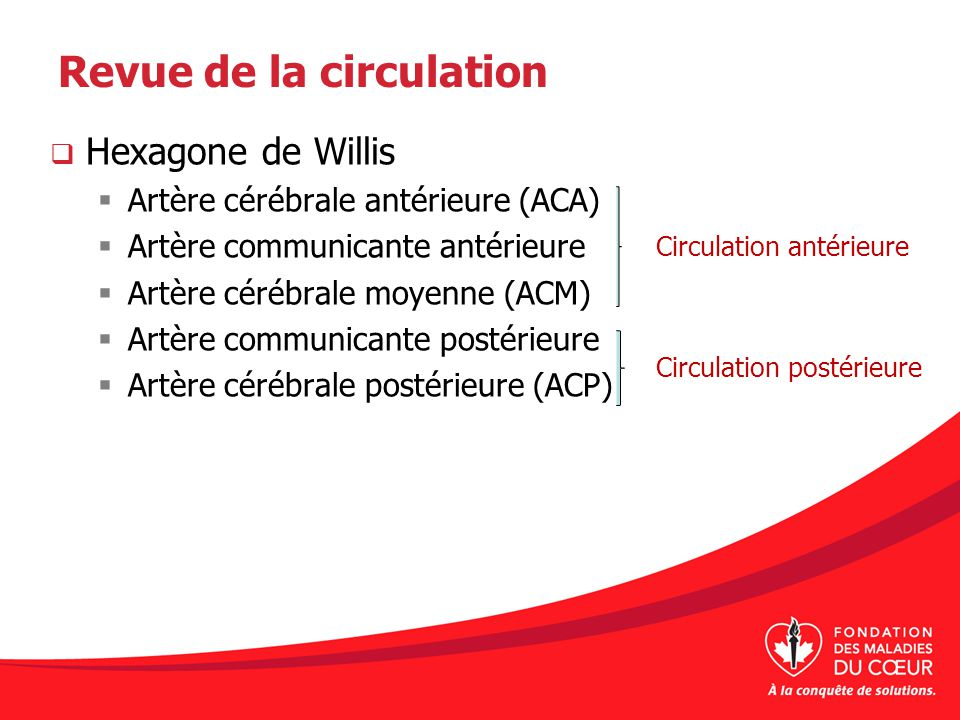 Revue de la circulation