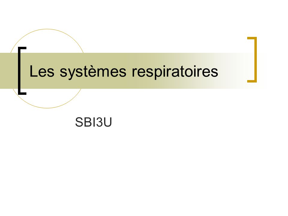 Les systèmes respiratoires