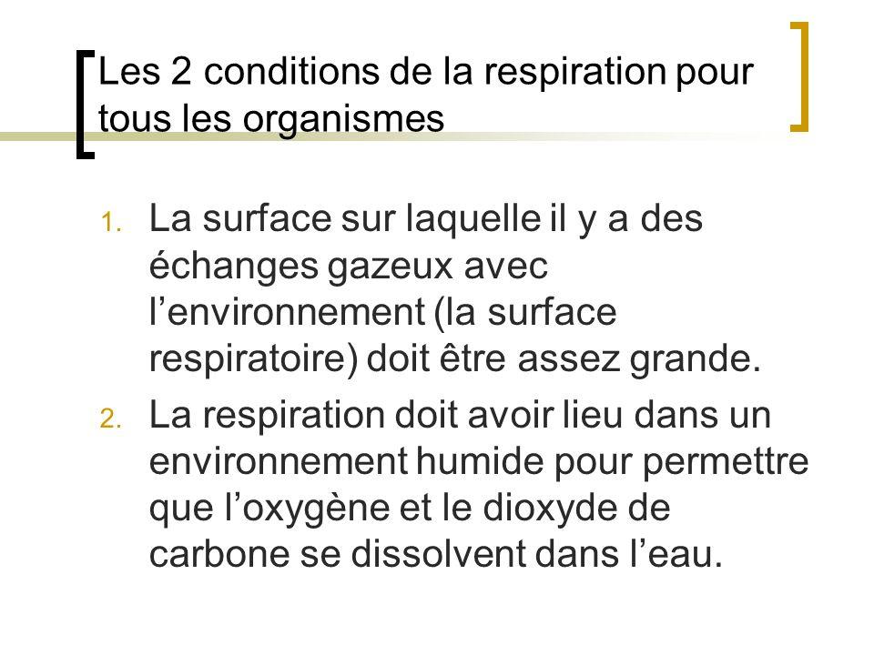 Les 2 conditions de la respiration pour tous les organismes