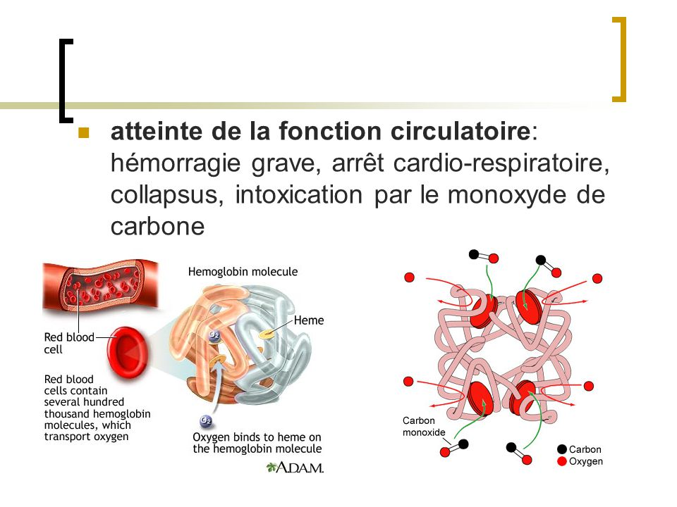 atteinte de la fonction circulatoire: hémorragie grave, arrêt cardio-respiratoire, collapsus, intoxication par le monoxyde de carbone