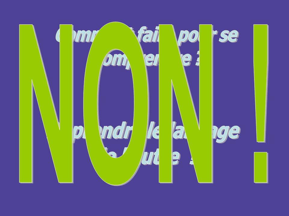 NON ! Comment faire pour se comprendre Apprendre le langage