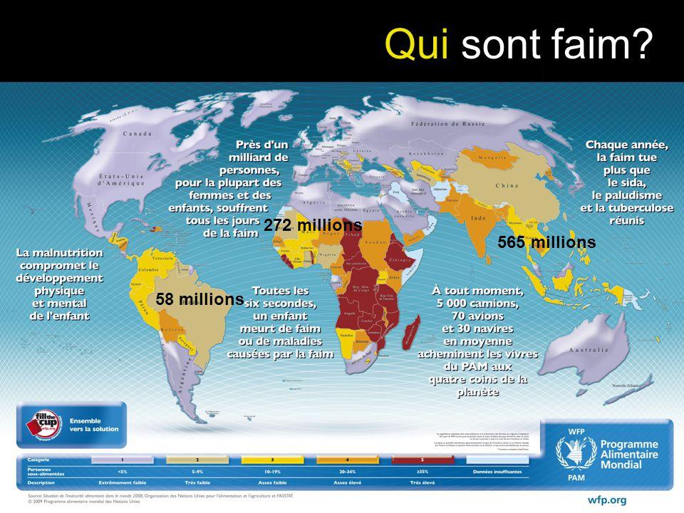 Qui sont faim 272 millions 565 millions 58 millions