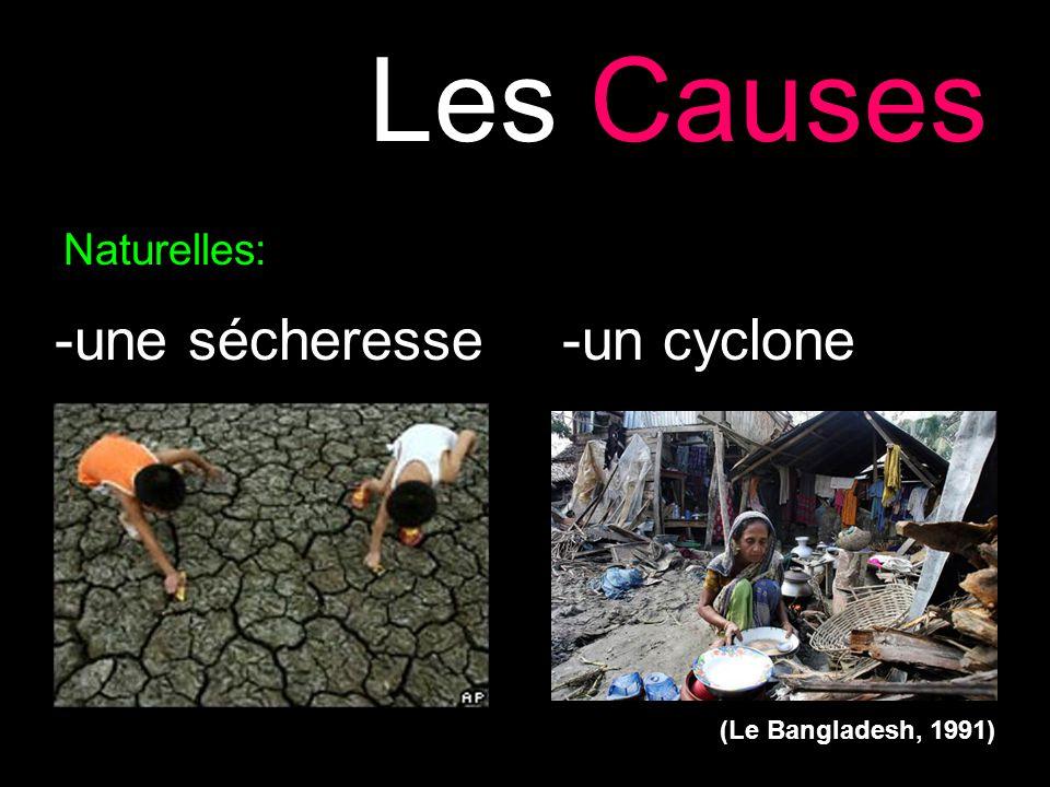 Les Causes -une sécheresse -un cyclone Naturelles: