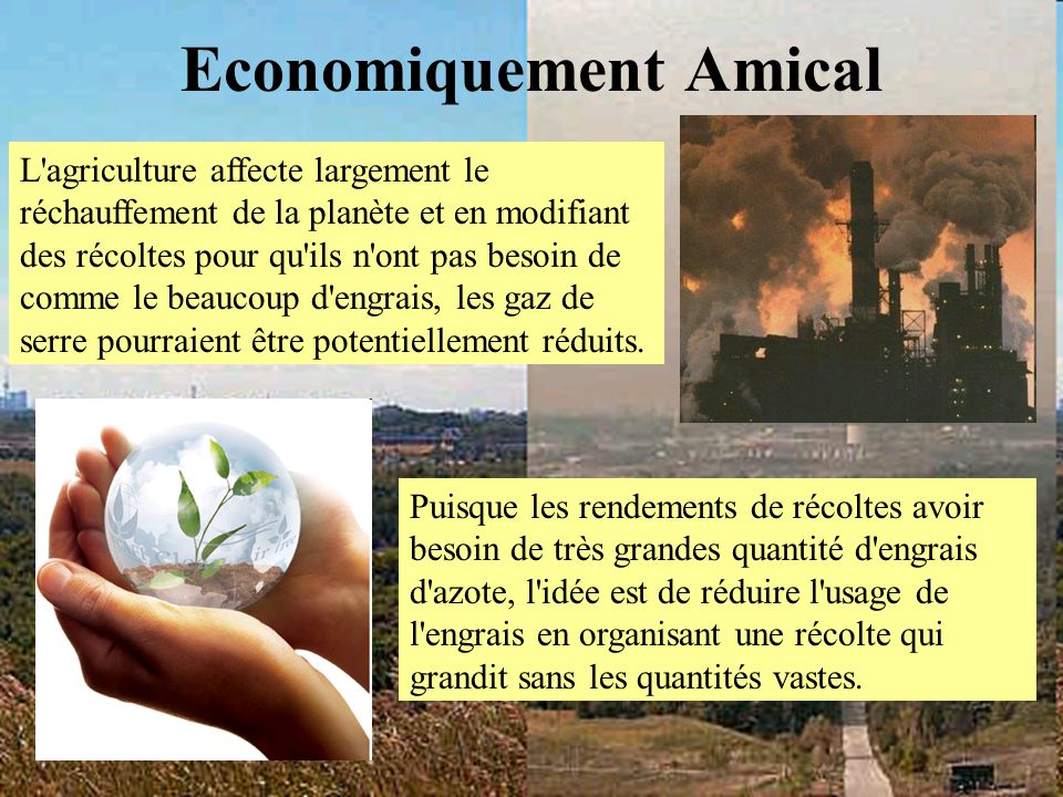 Economiquement Amical