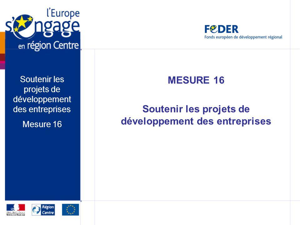 MESURE 16 Soutenir les projets de développement des entreprises