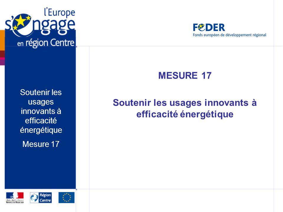 MESURE 17 Soutenir les usages innovants à efficacité énergétique