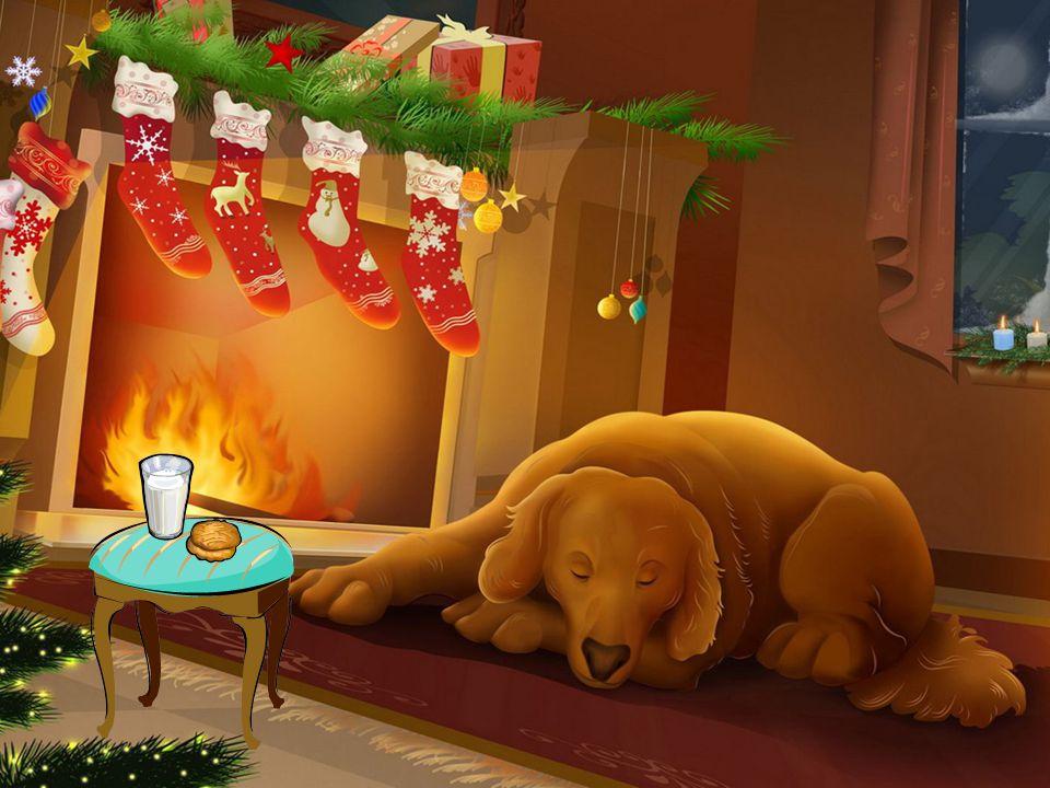 Toute la famille a participé à la décoration de la maison et surtout à la confection du sapin de Noël pour se préparer à cette grande fête.
