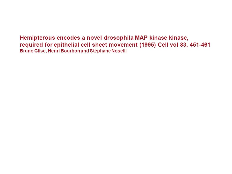 Hemipterous encodes a novel drosophila MAP kinase kinase,