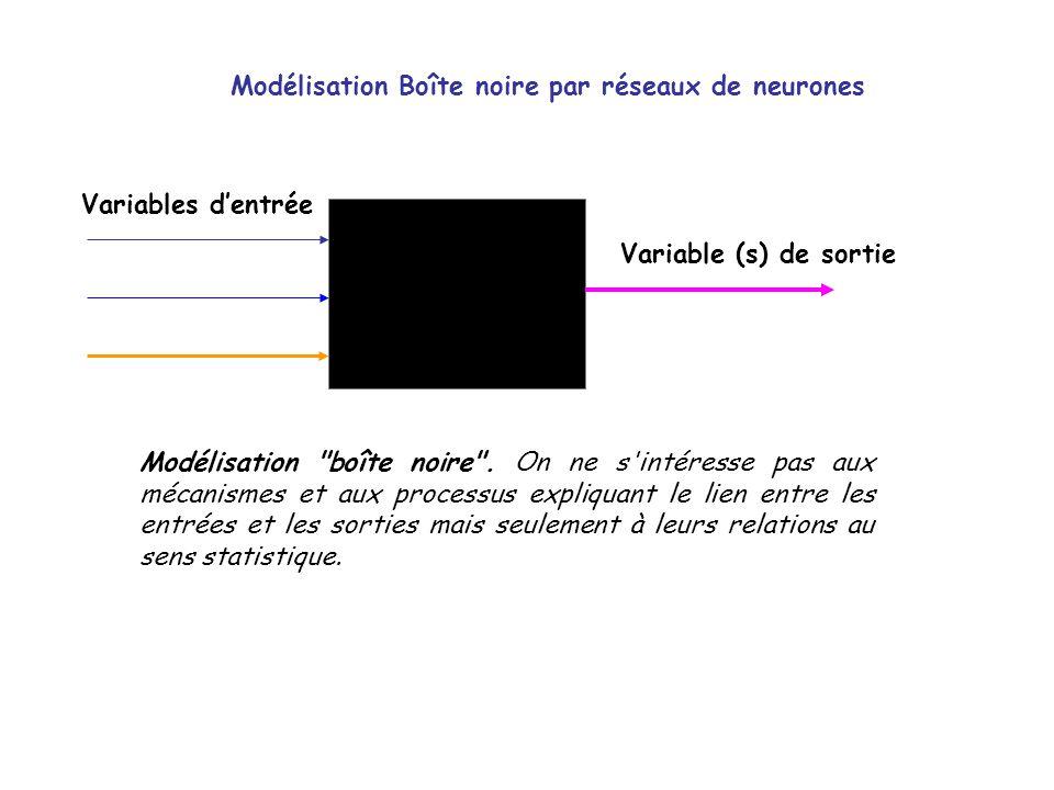 Modélisation Boîte noire par réseaux de neurones