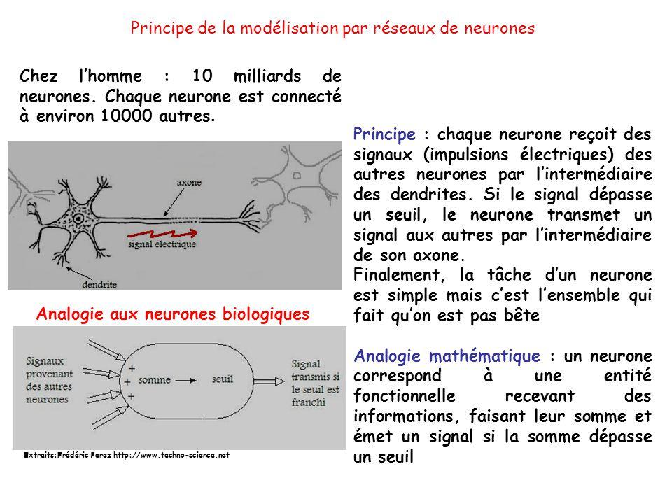 Principe de la modélisation par réseaux de neurones