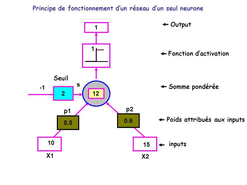Principe de fonctionnement d'un réseau d'un seul neurone