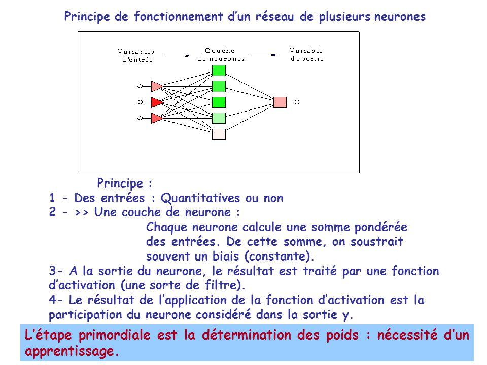 Principe de fonctionnement d'un réseau de plusieurs neurones