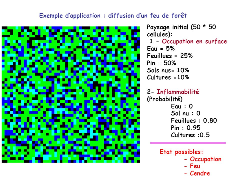 Exemple d'application : diffusion d'un feu de forêt
