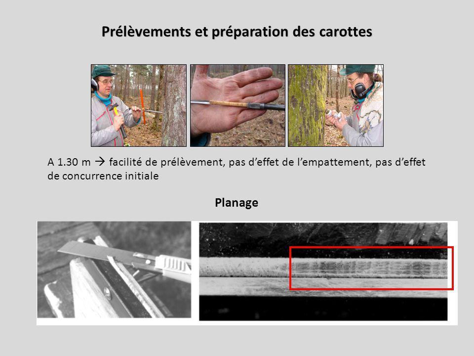 Prélèvements et préparation des carottes