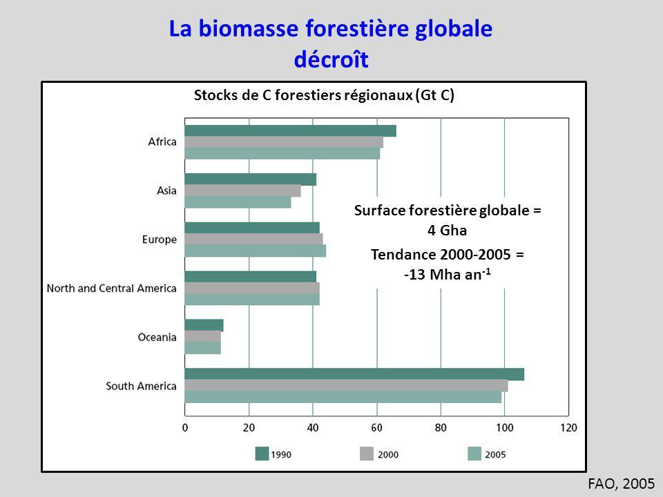 La biomasse forestière globale Surface forestière globale =