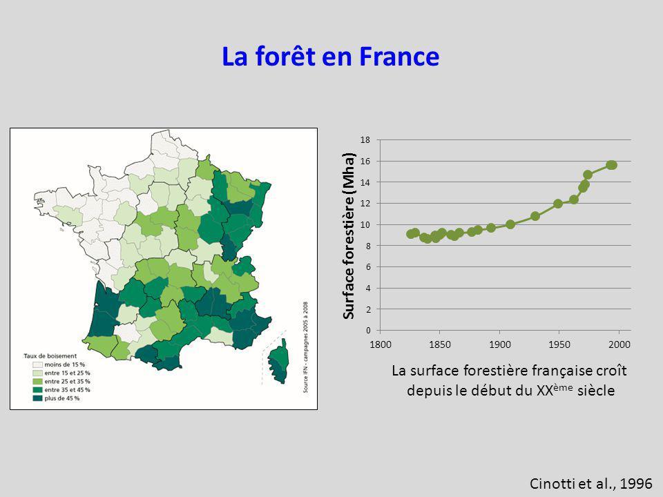 La forêt en France La surface forestière française croît