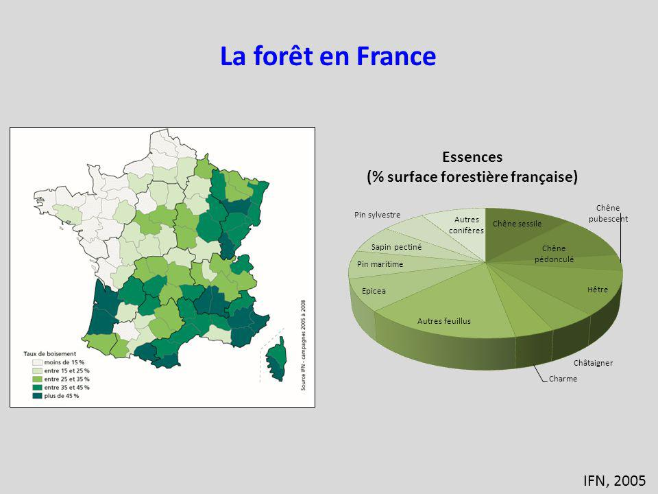 La forêt en France IFN, 2005
