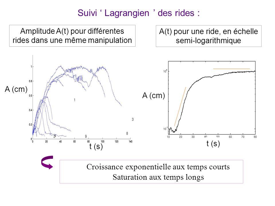 Suivi ' Lagrangien ' des rides :