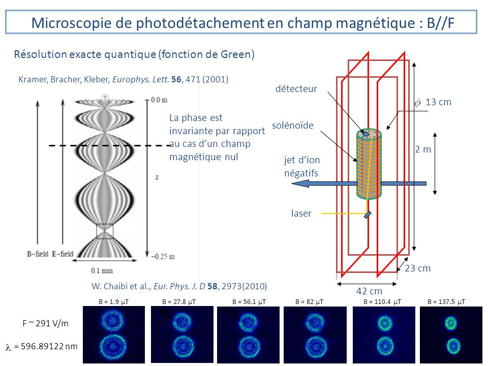 Microscopie de photodétachement en champ magnétique : B//F