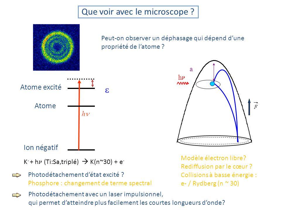 Que voir avec le microscope