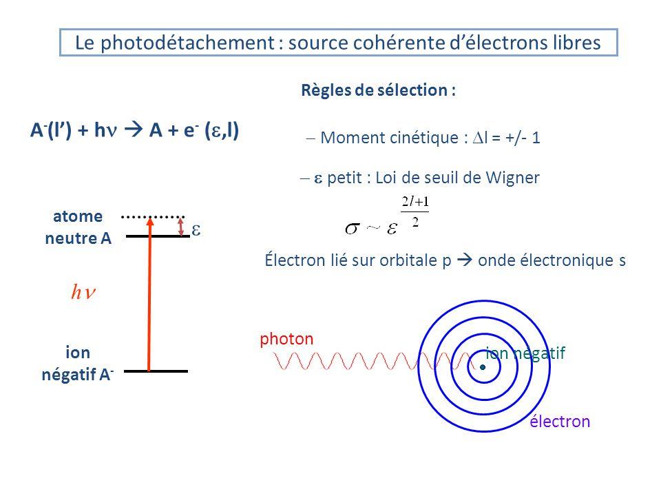 Le photodétachement : source cohérente d'électrons libres