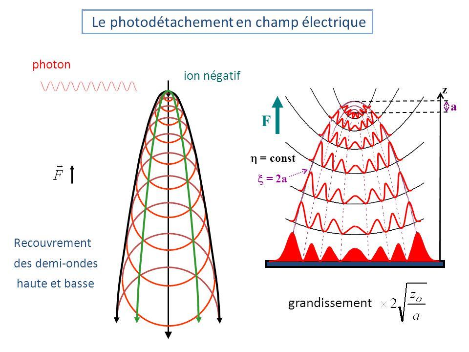Le photodétachement en champ électrique