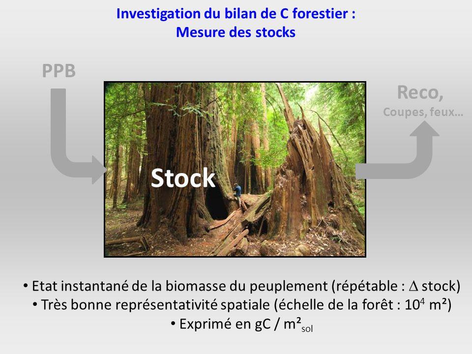 Investigation du bilan de C forestier :