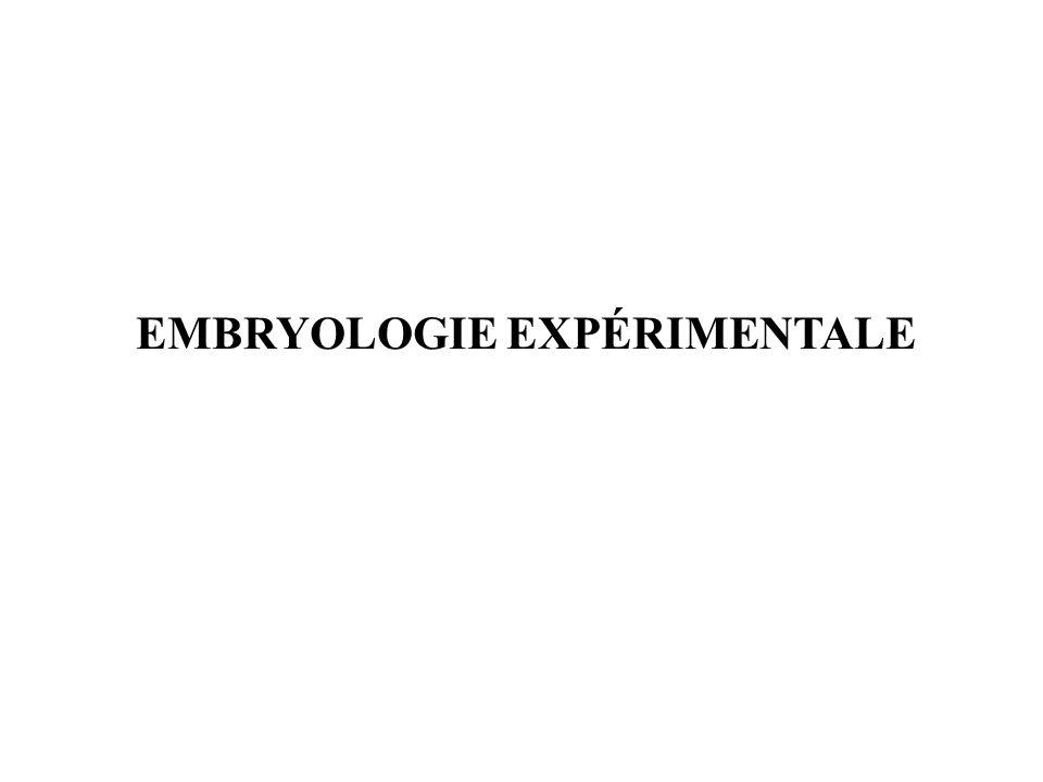 EMBRYOLOGIE EXPÉRIMENTALE